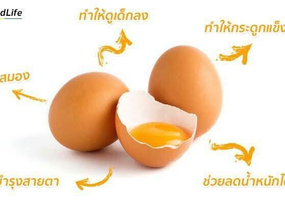 เรื่องไข่ไม่ได้มีดีแค่โปรตีน