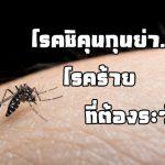 โรคชิคุนกุนย่า…โรคร้ายที่ต้องระวัง