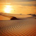 ทะเลทราย ไม่ต้องไปไกลถึงอียิปต์ ! เที่ยวทะเลทรายเวียดนามก็ได้