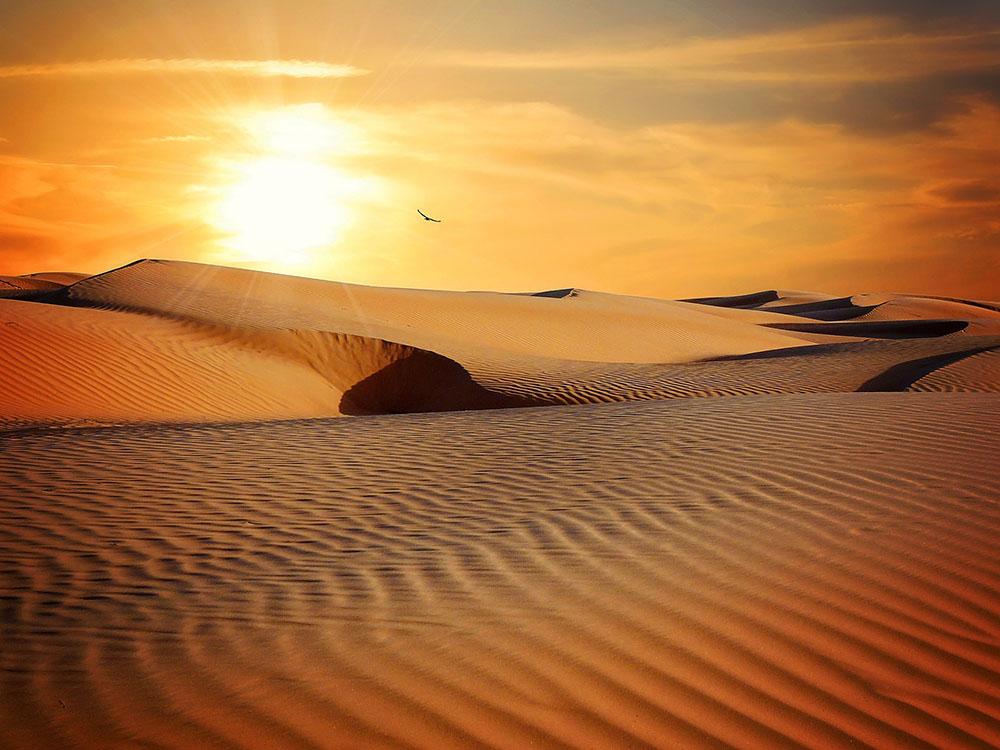 ทะเลทราย ไม่ต้องไปไกลถึงอียิปต์ ! เที่ยวทะเลทรายเวียดนามก็ได้ เรื่องทั่วไป