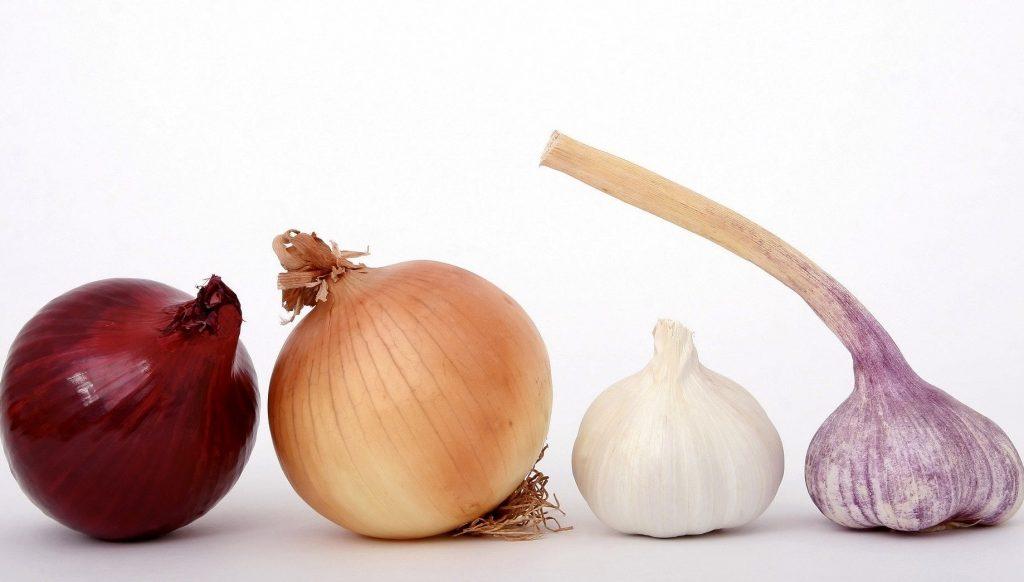 ผักสวนครัวรั้วกินได้ 5 ชนิด ที่เป็นสมุนไพร เกร็ดความรู้