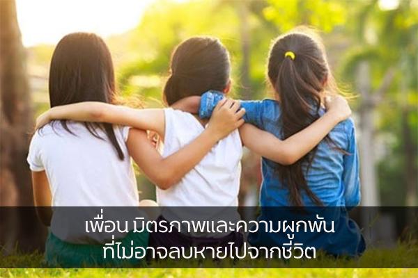 เพื่อน มิตรภาพและความผูกพันที่ไม่อาจลบหายไปจากชีวิต เรื่องทั่วไป เกร็ดความรู้รอบตัว เทคนิคต่างๆ สาระน่าสนใจ เพื่อน